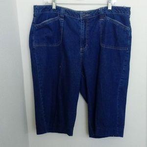 Women Denim Blue Jean Shorts Plus Size 18W